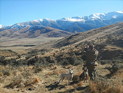 NZ Trophy Safaris